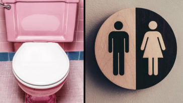 'Gents' and 'Ladies' toilets will now be compulsory in all public buildings.