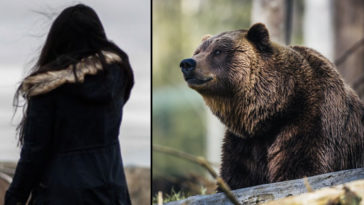 A woman has reportedly been eaten by bears after wandering away from her friend's forest wedding in Russia.