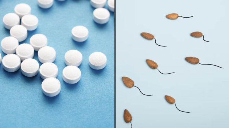 Scientists have given an update on how soon a male contraceptive pill will be available.